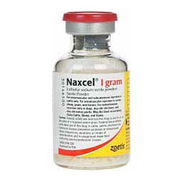 Naxcel for Multiple Species of Animals Zoetis Animal Health